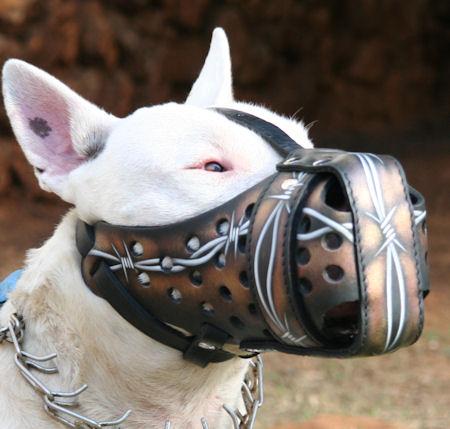 Bemalter Hundemaulkorb
